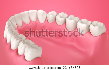 3D teeth or tooth illustration, inside view in mouth