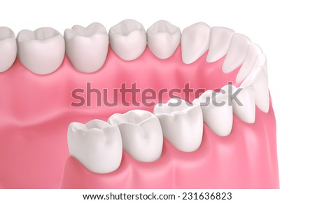 3D teeth or tooth illustration, perspective view in mouth isolated