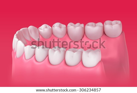3D teeth or tooth illustration, side view