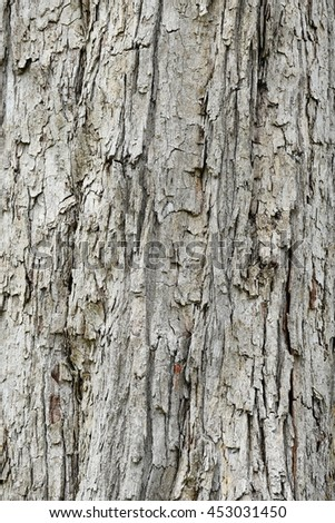 Decaying Wood Textured Background