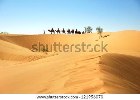 Desert caravan - stock photo