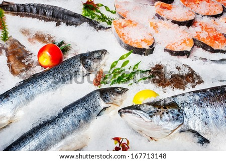 Different kinds of fish on ice  - stock photo
