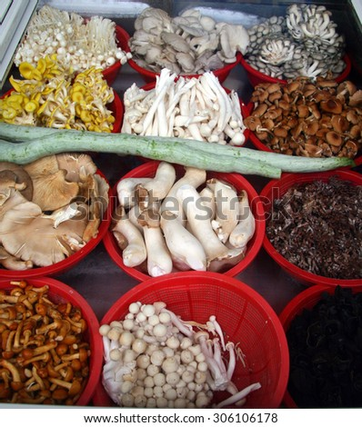 12 different species of fungi on the counter of a small Chinese restaurant, Wuyishan, China