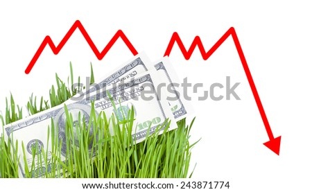 100 dollar bills growing in the green grass, Arrow falling down - stock photo