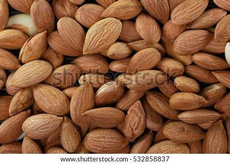 dried apricot kernel fruit isolated