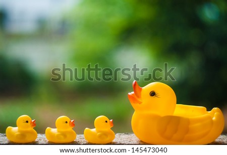 3 ducklings and a duck on bokeh background - stock photo