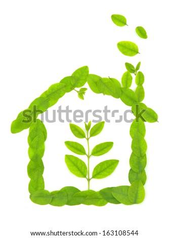 ecological house  - stock photo