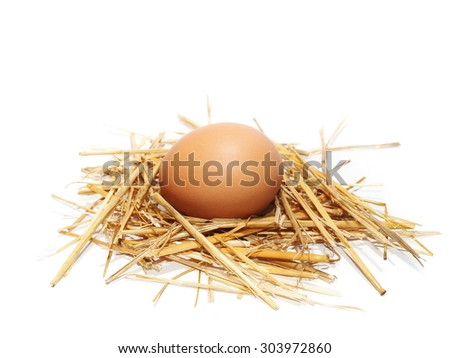 egg in nest isolated on white background - stock photo