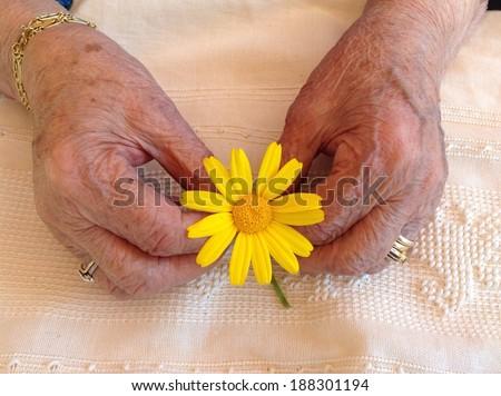 elderly hand - stock photo