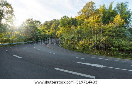 Empty winding forest road with morning sunshine