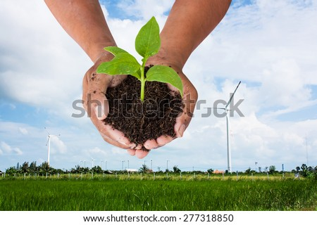 environment concept ,save the world -  man hand holding green tree  on wind turbine  background - stock photo