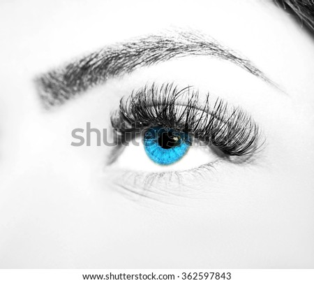 Eye Makeup. Beautiful Eyes Make up detail, eyelash extension
