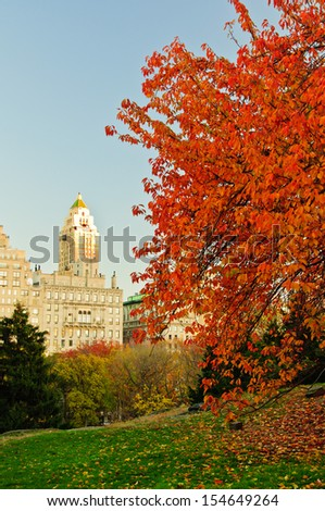 Fall colors in Central Park. New York City  - stock photo