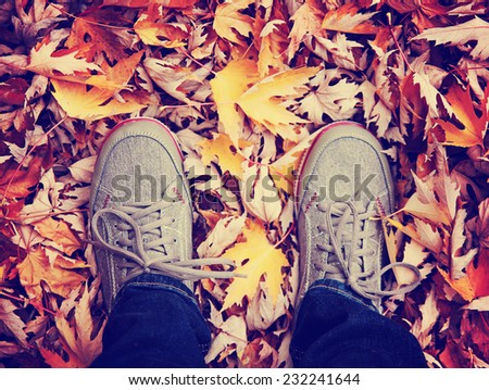 feet during fall when the leaves are turning colors toned with a retro vintage instagram filter effect - stock photo
