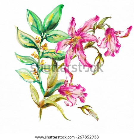 """Festive picturesque bouquet  flowers drawn with watercolor paints with pink lilies and exotic flowers.Album""""new bouquets by a holiday from water color flowers"""". Album""""Picturesque Lilies"""" - stock photo"""