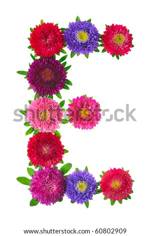 floral alphabet isolated on white background. letter E