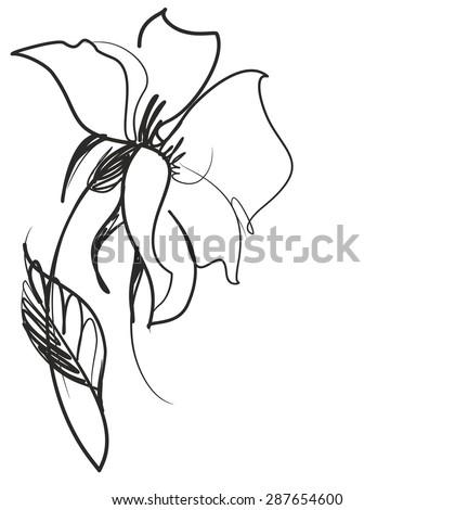 Flower background for design, - stock photo