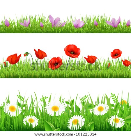 3 Flower Border With Grass, Isolated On White Background - stock photo