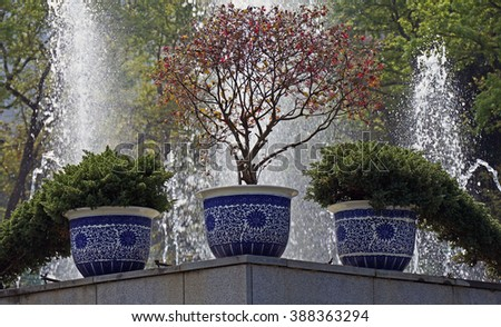 Flower pots and water fountain                                - stock photo