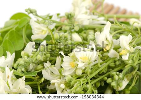 flowers and leaves,  (Moringa oleifera Lam.).  - stock photo