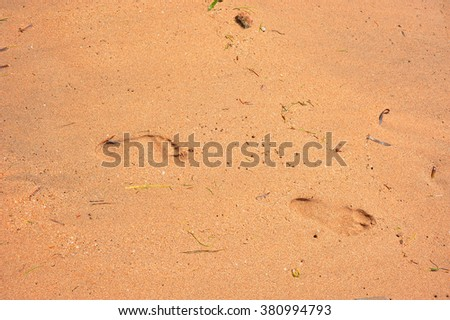 footprints on the hot sand
