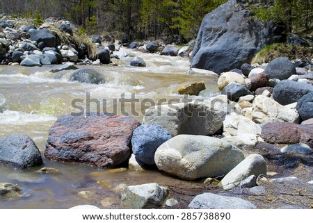 forest, stones and mountain river