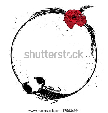 frame with flowers of red poppy  and scorpion