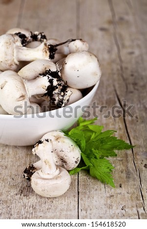 fresh champignons with parsley in a bowl