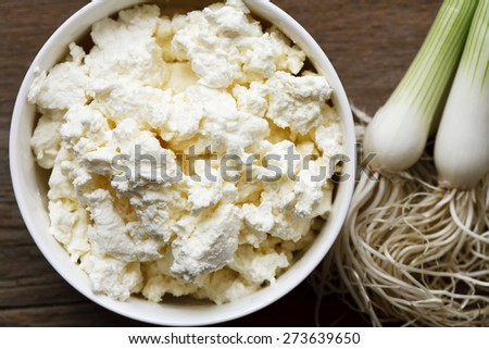 fresh white cheese and onion - stock photo