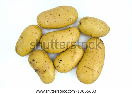 7 freshly harvested potatoes without roots and leaves.