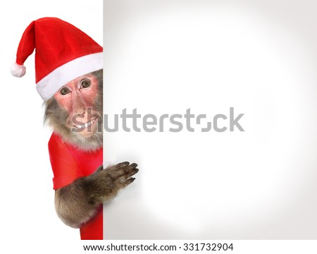 Funny monkey Santa Claus holding blank Christmas banner - stock photo