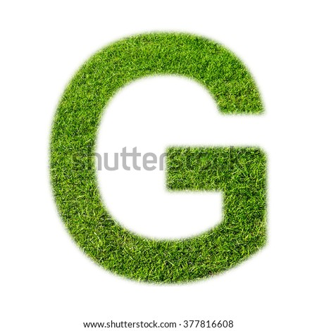 """G"" uppercase alphabet made of grass texture, isolated on white background"