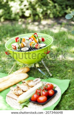 garden party with grilled food  - stock photo
