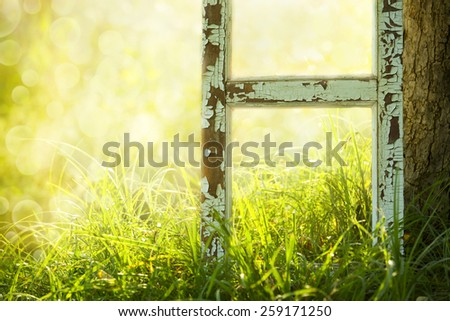 Garden with tree on the field  - stock photo