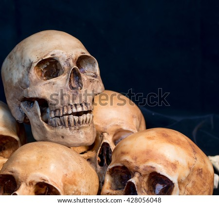 Genocides, skull on the same place,Still life of skull  - stock photo