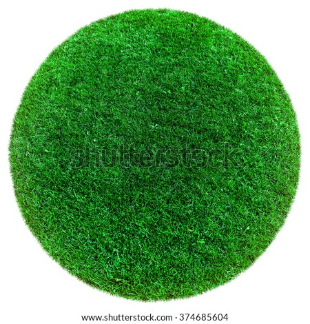 green earth grass on the white backgrounds - stock photo