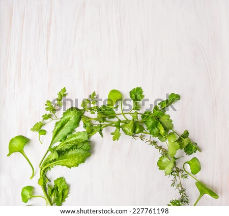 green herbs on white wooden table, food background, top view - stock photo
