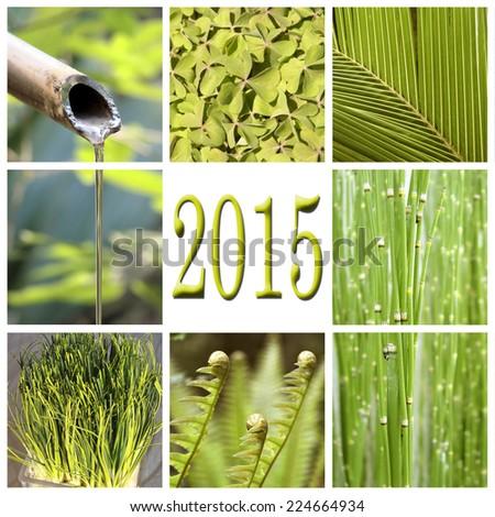 2015, green vegetation collage - stock photo