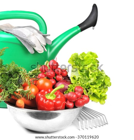 green watering can and  fresh vegetables. - stock photo