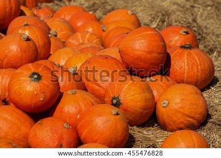 Halloween pumpkin, Bright Orange Pumpkins, Orange Pumpkins  - stock photo