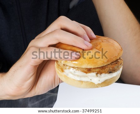 hamburger in the hand