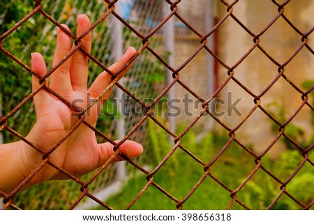 HAND IN jail  of life   imprisonment