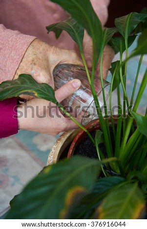 hands of a child taking a plant from the hands of a woman