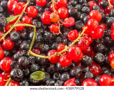 heap of assorted ripe forest fruits and other berries  - stock photo