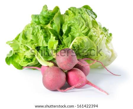 Heap Of Ripe Radish and lettuce - stock photo
