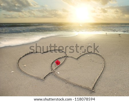 2 hearts drawn in sand at the beach and a flower