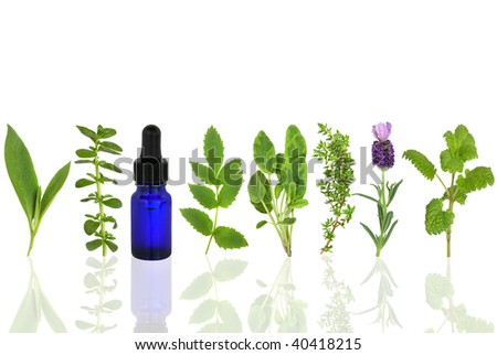 Herb leaf selection of comfrey, peppermint, valerian, sage, thyme, lavender and lemon balm with an aromatherapy essential oil glass dropper bottle, over white background. - stock photo