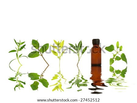 Herb leaf sprigs and an aromatherapy essential oil bottle with reflection in rippled water, over white background. - stock photo