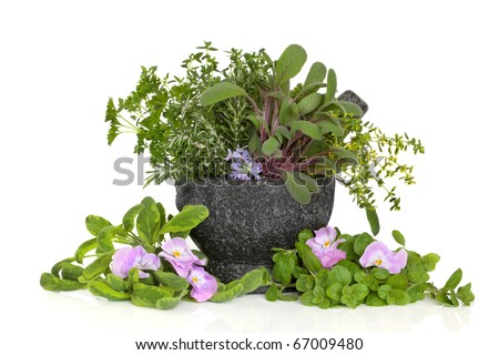 Herb leaf sprigs of oregano, sage, thyme, parsley with  rosemary and viola flowers, in a granite mortar with pestle,  isolated over white background. - stock photo
