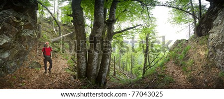 hiker at Alpine Path, Black Forest, Germany